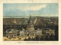 1871 Washington D.C. Bird's Eye View Panoramic Map