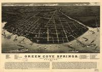1885 Green Cove Springs, FL Bird's Eye View Panora
