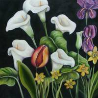 A single tulip surrounded by Calla Lilies
