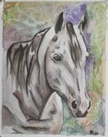 Michelle's horse, Princess