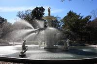 Savannah Fountain by Carol Groenen