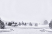 Winter Landscape - Infrared Film