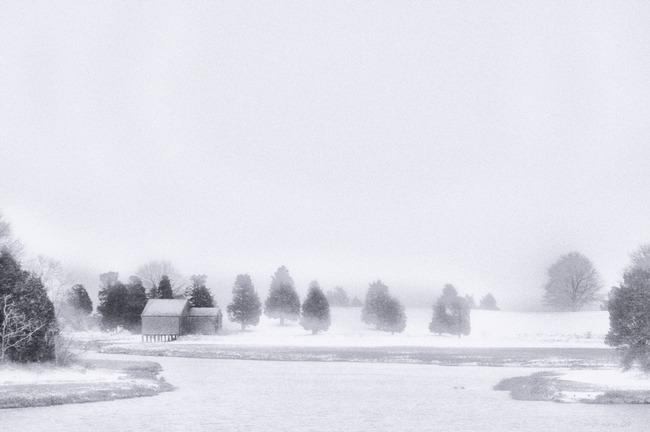 Winter Landscape - Infrared Film by Dapixara Black White Photos