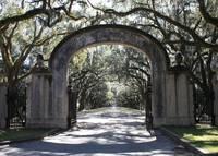 Wormsloe Plantation Gate by Carol Groenen