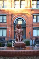 Cotton Exchange Building in Savannah by Carol Groenen