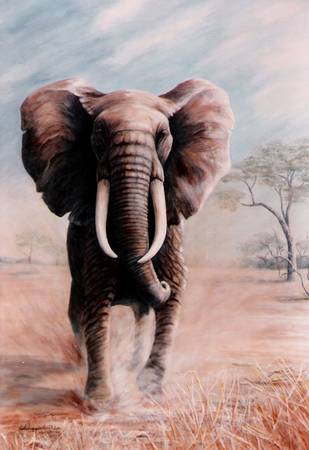 African Elephant painting by DiDi Higginbotham