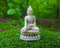 buddha in green moss