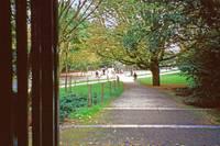 7Vondel Park by Priscilla Turner