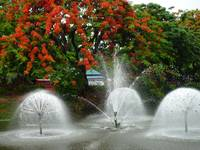 Chiang Mai Fountains