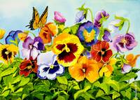 Pansies with Butterfly