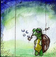 Turtle's and Bubbles