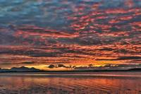 Sailor's Delight