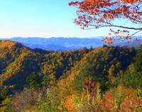 Autumn In The Great Smokies 109
