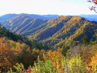 The Great Smokey Mountains 110