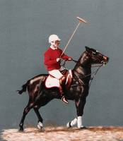 Polo Pony (horse) painting