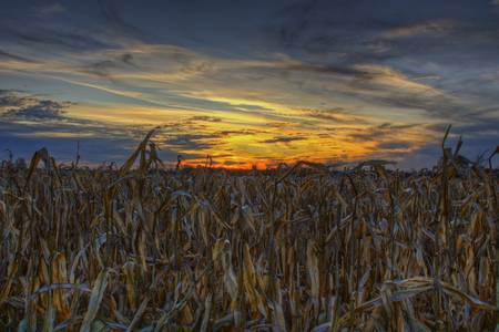 Ohio November Sky by Jim Crotty by Jim Crotty