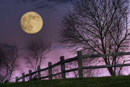 November Moon by Jim Crotty by Jim Crotty
