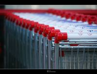 Shopping in red Trolley...