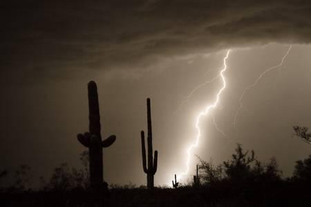 Lightning Strike in the High Desert
