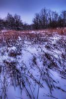 Deep Winter at Sugarcreek by Jim Crotty 5