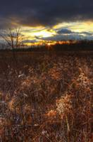New Years Day at Sugarcreek by Jim Crotty 9 (1)
