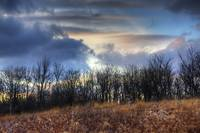 New Years Day at Sugarcreek by Jim Crotty 10