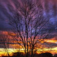 Sunset Sky in Winter Sugarcreek Township by Jim Crotty