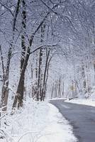 Winter Road in Dayton