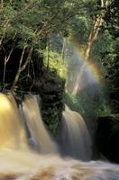 Santuario Falls Amazon_RS0120