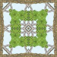 Bark Leaves Stone Kaleidoscope Art 8
