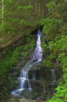 Small Cascade Spring in Great Smoky Mountain NP