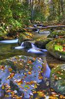 Stream in Autumn Great Smoky Mountain NP