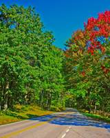 Skyline Drive Road Scene Vibrant Colors Fake 8X10