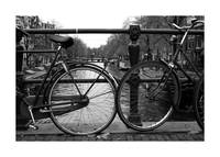 Amsterdam Bicycles (Large)
