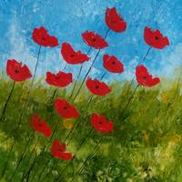 Close to Spring, windy days, red poppies