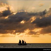 Sunset Sails by Donnie Shackleford