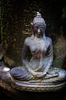 green_temple_medating_buddha