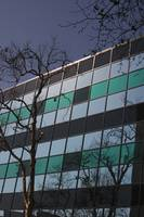 Modern Architecture Glass Window Facade with Tree