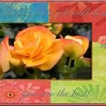 Orange Begonias Prints & Posters