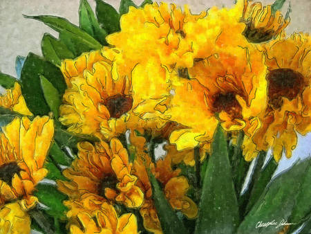 Yellow Chrysanthemums 4 by Christopher Johnson
