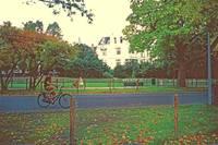 9Vondel Park by Priscilla Turner