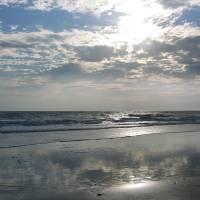 The Beach Rock by Eileen Ringwald