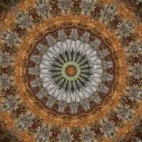 Harvest Day Impasto Kaleidoscope Art 1 by Christopher Johnson
