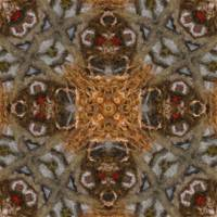 Harvest Day Impasto Kaleidoscope Art 6 by Christopher Johnson