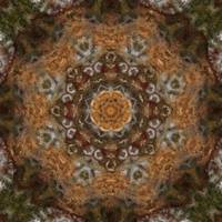 Harvest Day Impasto Kaleidoscope Art 5 by Christopher Johnson