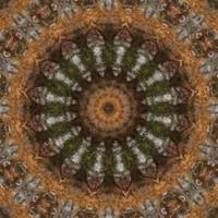 Harvest Day Impasto Kaleidoscope Art 4 by Christopher Johnson
