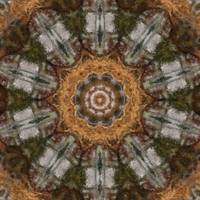 Harvest Day Impasto Kaleidoscope Art 3 by Christopher Johnson