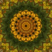 Autumn Delight Kaleidoscope Art 1 by Christopher Johnson
