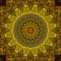 Autumn Delight Kaleidoscope Art 2 by Christopher Johnson