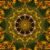 Autumn Delight Kaleidoscope Art 4 by Christopher Johnson